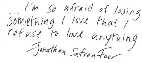 im-so-afraid-of-losing-something-i-love-that-i-refuse-to-love-anything-147577-500-221_large